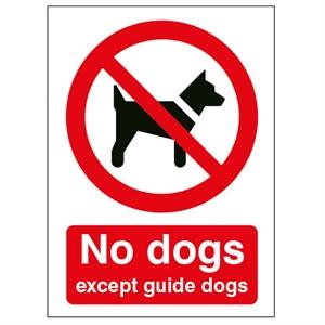 Picture of 210x148mm No Dogs Except Guide Dogs